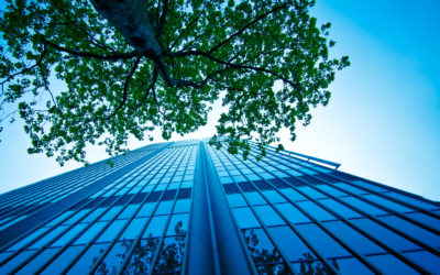 SMEs: Closing the sustainability gap