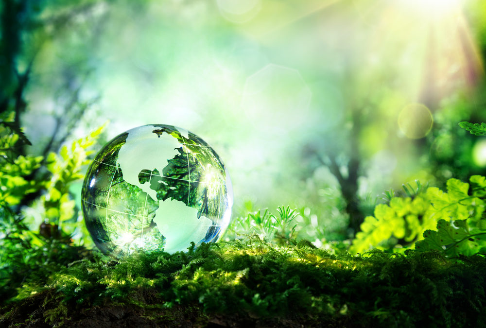 Five ways the print industry can apply circular economy principles